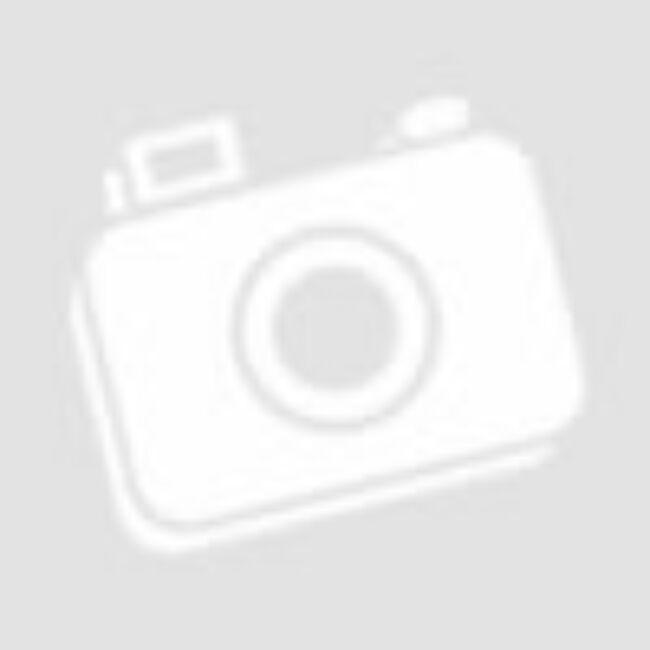 Hotel - gyerek és családi stratégiai társasjáték 8 éves kortól - Asmodee