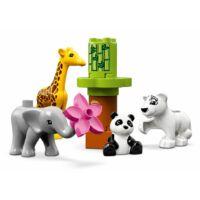 LEGO DUPLO Town - Állatbébik 10904 - Egyszerbolt Társasjáték