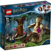 LEGO Harry Potter  - A Tiltott Rengeteg: Összecsapás umbridge 75967 - Egyszerbolt Társasjáték