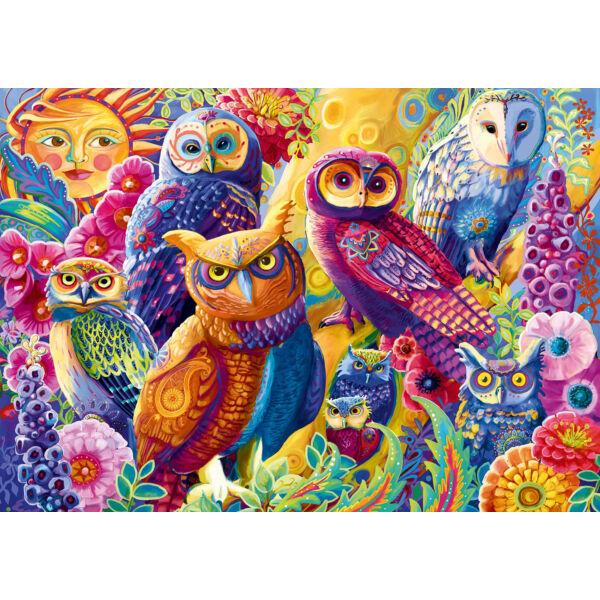 Owl Anatomy - Bluebird 70498-P - 1000 db-os puzzle